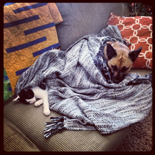 Nala and Betty - Best Friends
