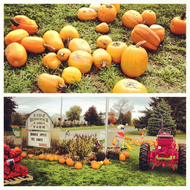Slick and I went to the pumpkin patch in the Mitten.