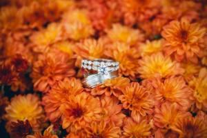 Rings2
